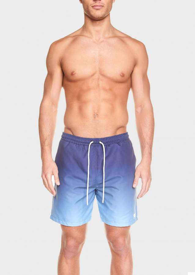 Enfold Swim Shorts